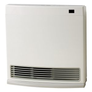 Rinnai DY15N Dynamo Natural Gas Heater 32049