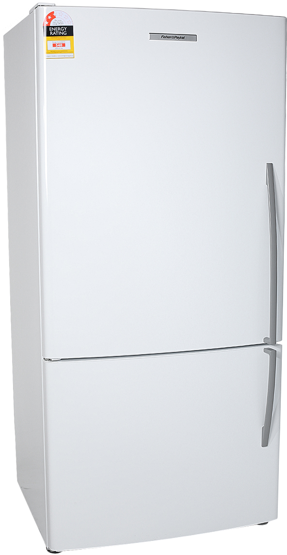 Fisher & Paykel E522BLE4 519L Bottom Mount Fridge